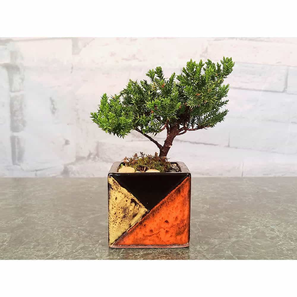 Wholesale Mosaic Square Vase Bonsai