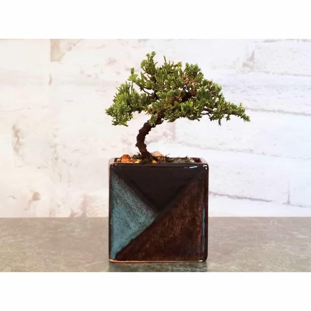 Wholesale Mosaic Rectangle Vase Bonsai