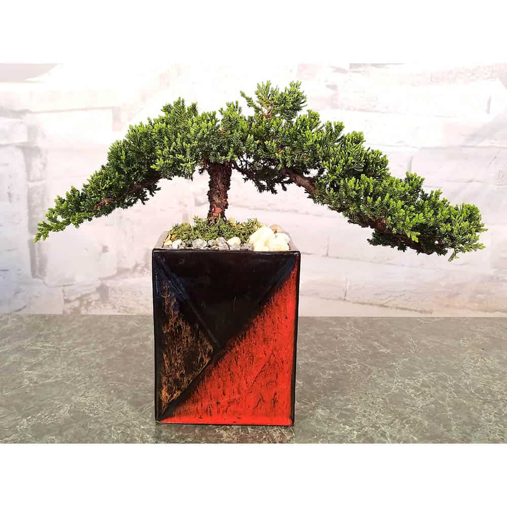 Wholesale Mosaic Vase Bonsai