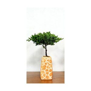 Elegant Vase Safari Print Bonsai