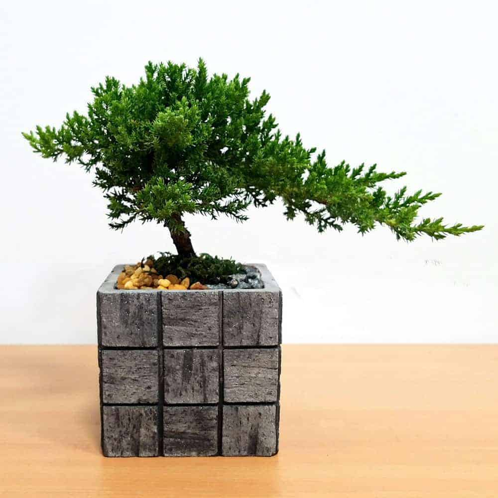 Wholesale Gray Tile Medium Square Vase Bonsai