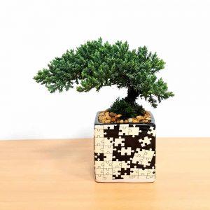 Puzzle Square Black & White Bonsai