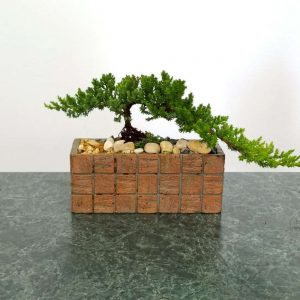 Wholesale Terracotta Tile Rectangular Vase Bonsai