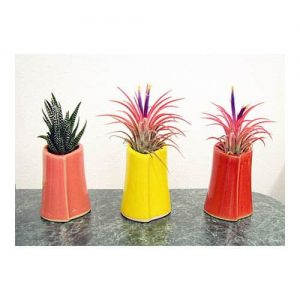 Mini Heart-Shaped Vase Air Plants