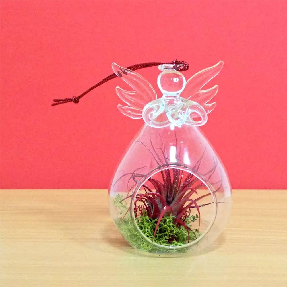 Angel Glass Vase Hanging