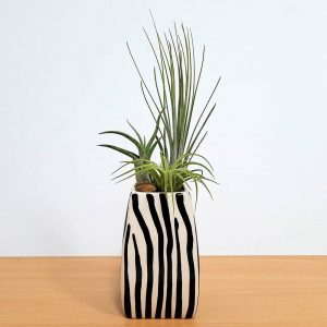 Elegant Vase Safari Print with Air Plant