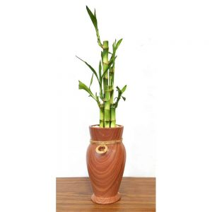 Woodgrain Vase Tall Lucky Bamboo