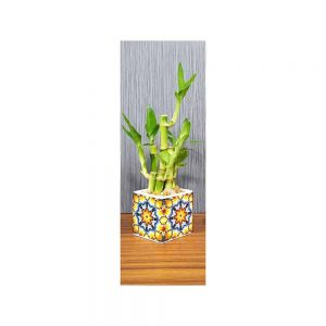 Wholesale Kaleidoscope Vase Lucky Bamboo