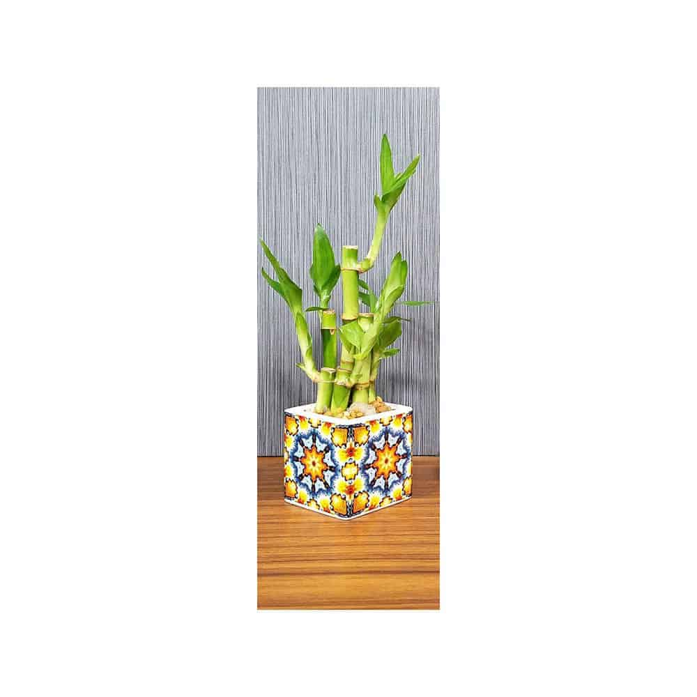Wholesale Kaleidoscope Vase Lucky Bamboo