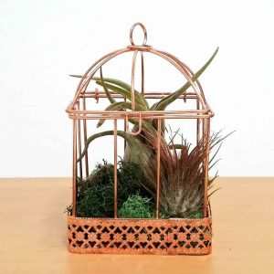 Wholesale Large Wire Bird Cage Air Plants