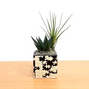 Puzzle Square Black & White Air Plants
