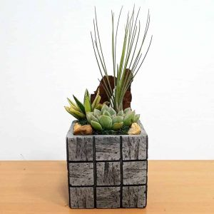 Wholesale Gray Tile Medium Square Air Plants Succulents