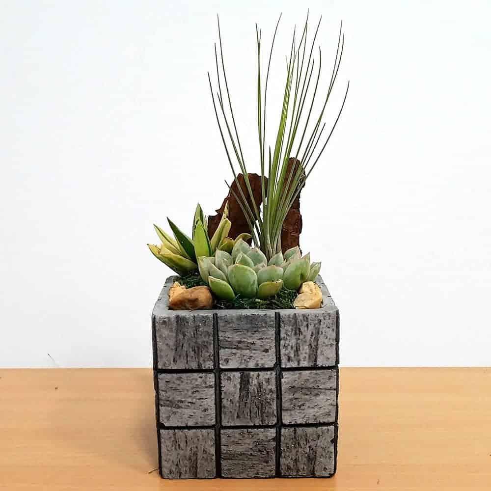 Wholesale Gray Tile Medium Square Air Plants Succulents