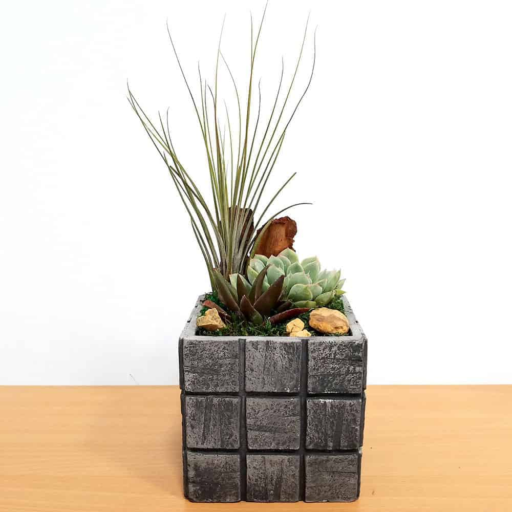 Wholesale Gray Tile Large Square Air Plants Succulents