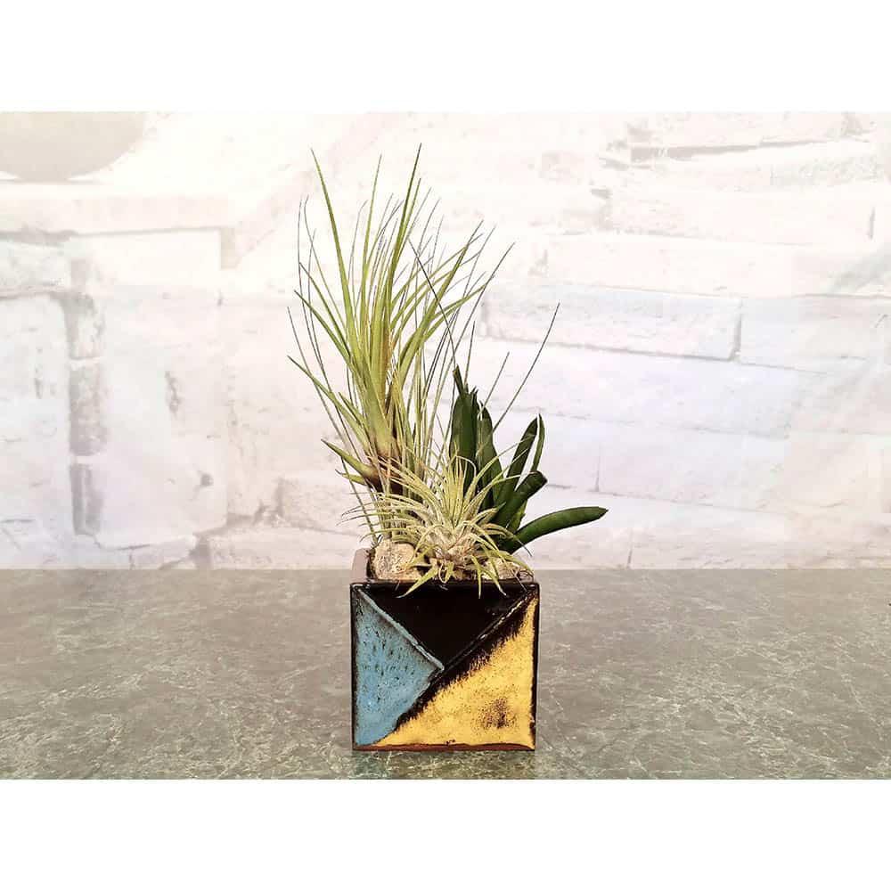 Wholesale Square Mosaic Vase Air Plants, Succulents, Cactus