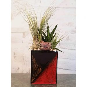Wholesale Mosaic Vase Air Plants, Succulents, Cactus