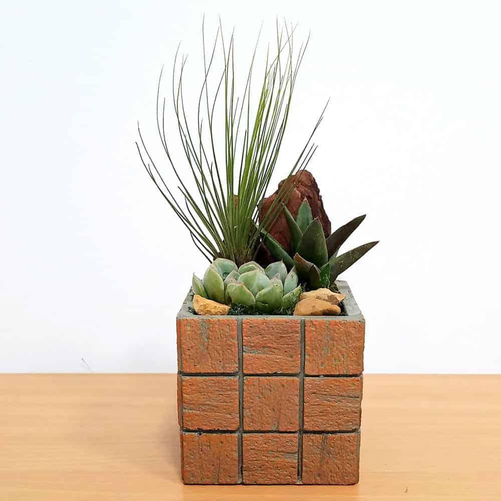 Wholesale Terracotta Tile Medium Square Air Plants Succulents
