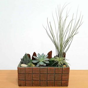 Wholesale Terracotta Tile Long Rectangular Air Plants Succulents