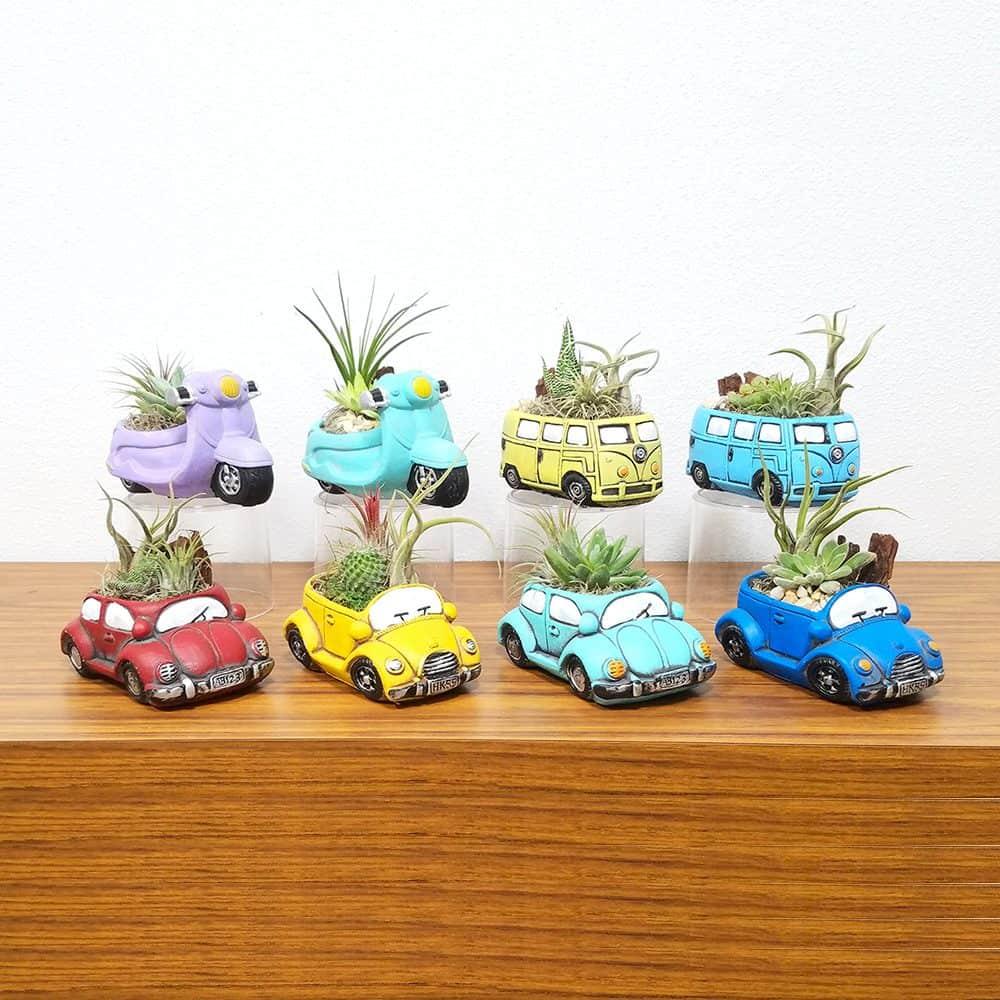 Caricature Vehicles Air Plants