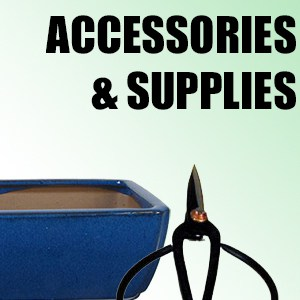 category-accessories-supplies